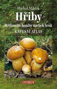 Hřiby - Hřibovité houby našich lesů