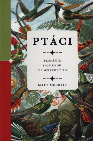 Ptáci - Matt Merritt | Booksquad.ink