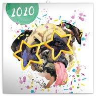 Poznámkový kalendář Kamarádi z akvarelu 2020, 30 × 30 cm