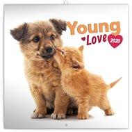 Poznámkový kalendář Young Love 2020, 30 × 30 cm