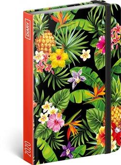 Obálka titulu Týdenní diář Ananasy 2020, 11 × 16 cm