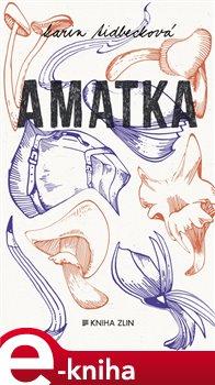 Obálka titulu Amatka