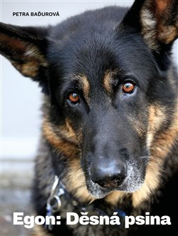 Obálka titulu Egon: Děsná psina