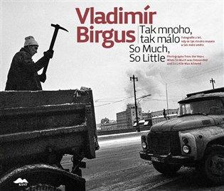 Tak mnoho, tak málo:Fotografie z let, kdy se tak mnoho muselo a tak málo smělo - Vladimír Birgus | Replicamaglie.com
