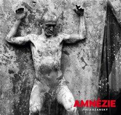 Obálka titulu Amnézie - průvodní jev a problém současné doby
