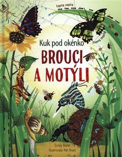 Obálka titulu Brouci a motýli - Kuk pod okénko