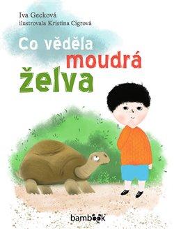 Obálka titulu Co věděla moudrá želva