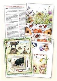 Didaktické karty ke knize 'Příběhy ze staré zahrady'