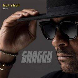 Obálka titulu Hot Shot 2020/Deluxe