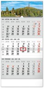 Nástěnný kalendář 3měsíční Krajina šedý – s českými jmény 2021, 29,5 × 43 cm