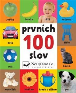 Obálka titulu Prvních 100 slov