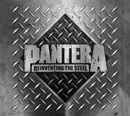 Reinventig The Steel