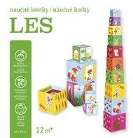 Naučné kostky - Les