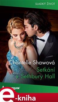 Obálka titulu Setkání v Sethbury Hall