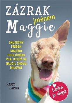 Obálka titulu Zázrak jménem Maggie