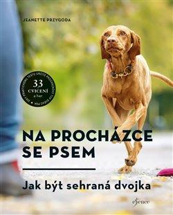 Na procházce se psem