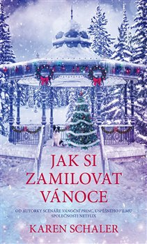 Obálka titulu Jak si zamilovat Vánoce