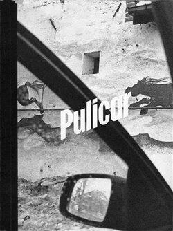 Obálka titulu Pulicar