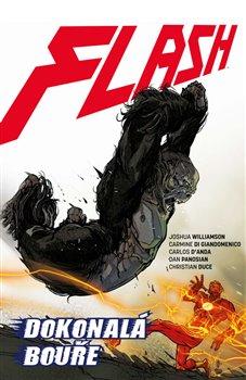 Obálka titulu Flash 7: Dokonalá bouře