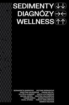 Obálka titulu Sedimenty diagnózy wellness