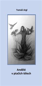 Obálka titulu Andělé v ptačích tělech