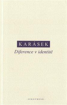 Obálka titulu Diference v identitě