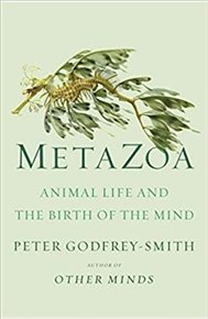 Metazoa : Animal Minds and the Birth of Consciousness