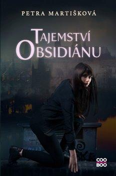 Obálka titulu Tajemství obsidiánu