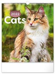 Nástěnný kalendář Kočky 2022, 30 x 34 cm