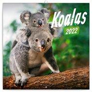 Poznámkový kalendář Koaly 2022
