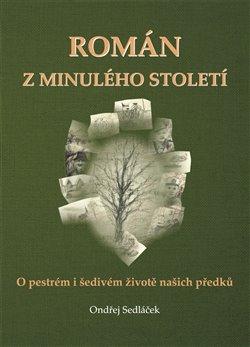 Obálka titulu Román z minulého století