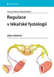 Regulace v lékařské fyziologii
