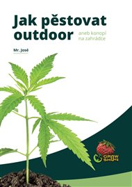Jak pěstovat outdoor