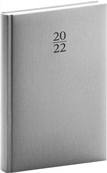 Denní diář Capys 2022, stříbrný