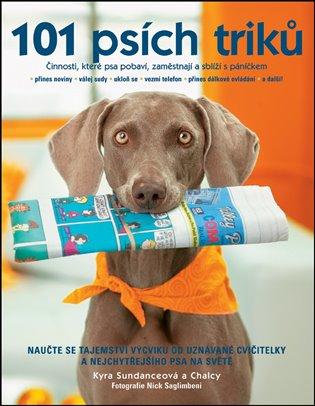 Kyra Sundanceová – 101 psích triků, Činnosti, které psa pobaví, zaměstnají a sblíží s páníčkem