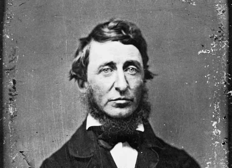 Vůbec nejlepší Thoreau?