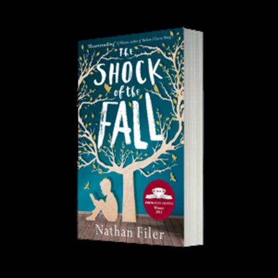 Autor: Nathan Filer (1982). Titul: Shock Of The Fall ( americké vydání má název Where The Moon Isn´t.) Pravděpodobně minulé autorovo povolání: ošetřovatel psychiatricky nemocných pacientů. Téma knihy: schizofernik bojuje s pocity viny.